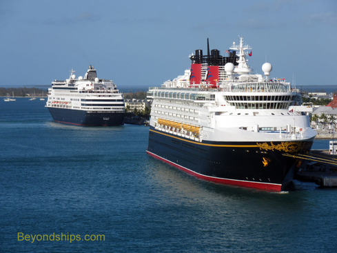 Disney Magic and Ryndam cruise ships