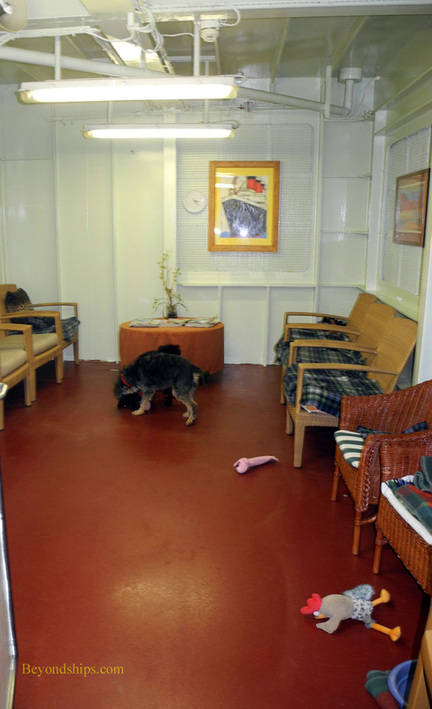 Kennels playroom on Queen Mary 2