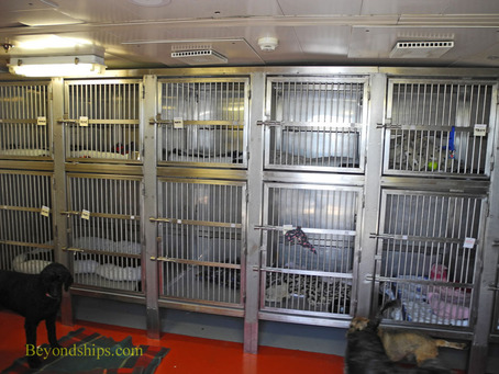 The kennels on Queen Mary 2